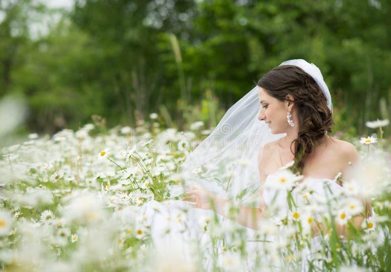 Brautporträt lizenzfreie stockfotos