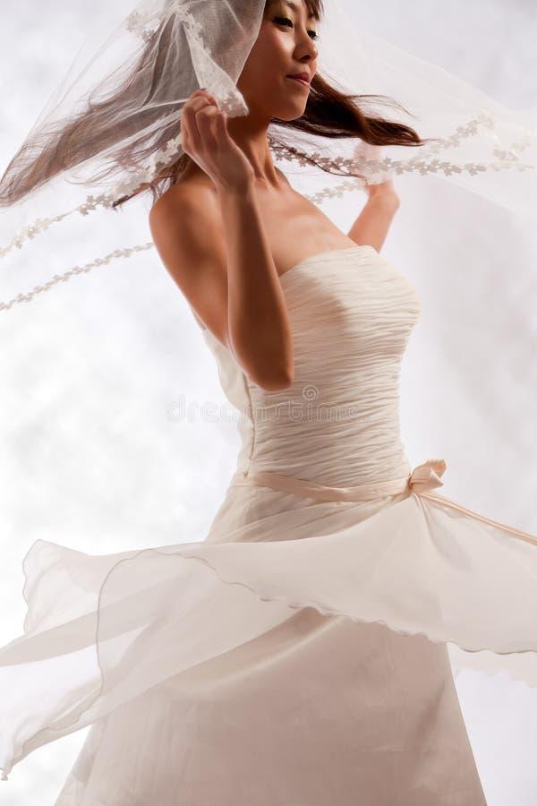 Brautweiß stockfoto