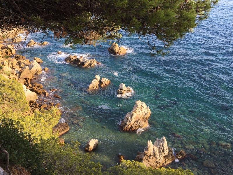 Brava mediterrâneo da costela fotos de stock