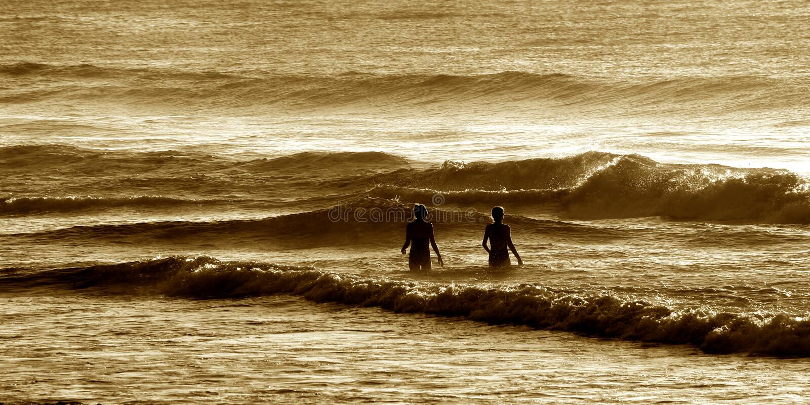 Braving the early morning sea royalty free stock photos
