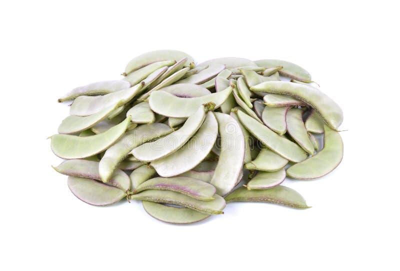 Bravoure de lablab d'égypte ou haricots indiens de papdi sur le fond blanc photo libre de droits