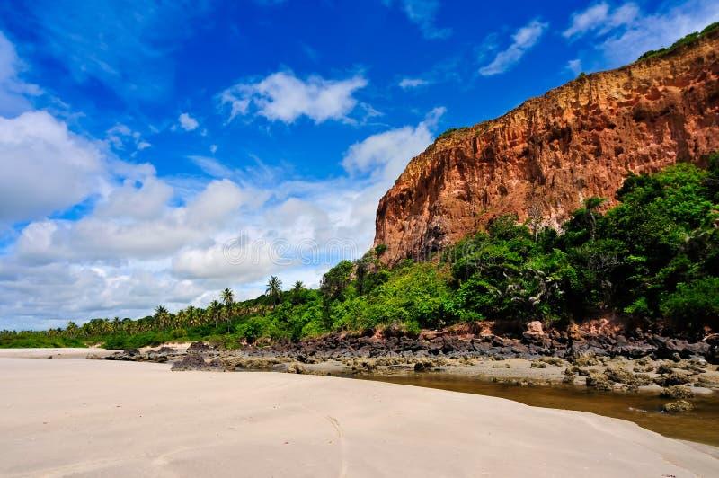 Download Brazil Coastline stock image. Image of vacation, trees - 20866837