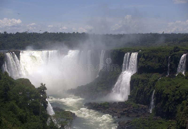 brazil faller iguacuen arkivfoto