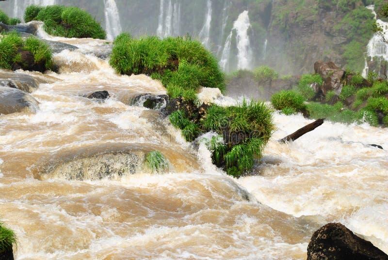 brazil faller iguazuen royaltyfri foto
