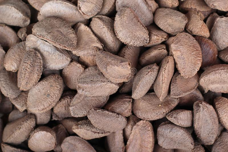 Brazil inshell nuts. On the vegetable market counter stock images