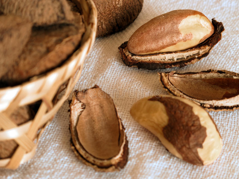 Download Brazil nuts stock image. Image of nuts, food, close, hazel - 16860559