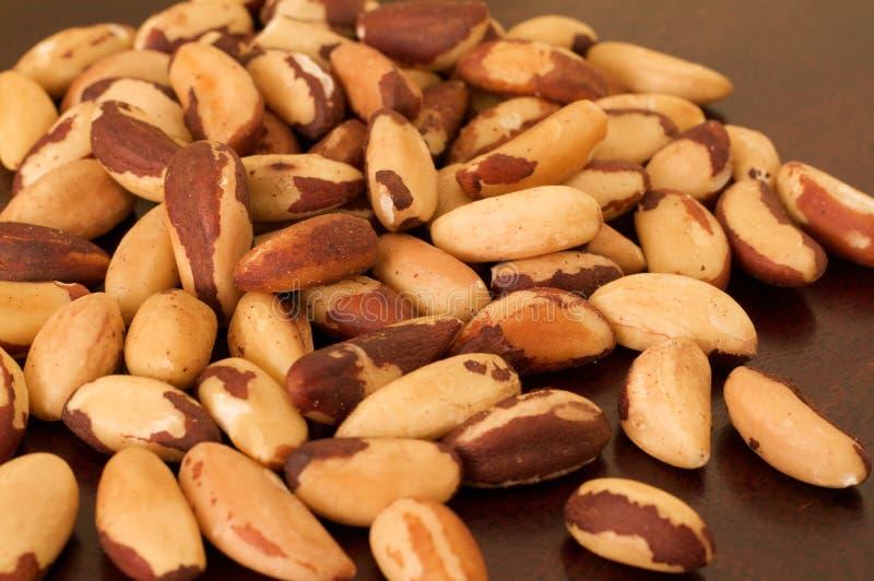 Brazil Nuts royalty free stock photo