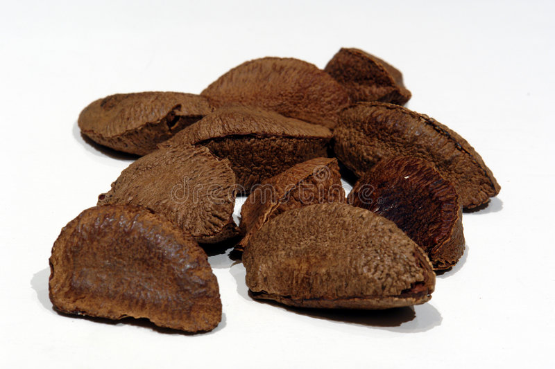 Download Brazil nuts stock image. Image of crazy, nuts, nutshell - 1989329