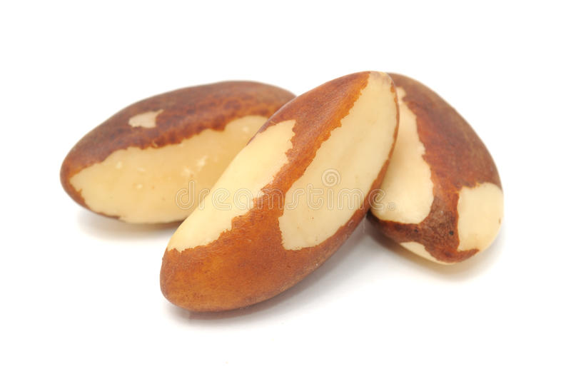 Brazil Nuts Close-up royalty free stock photography