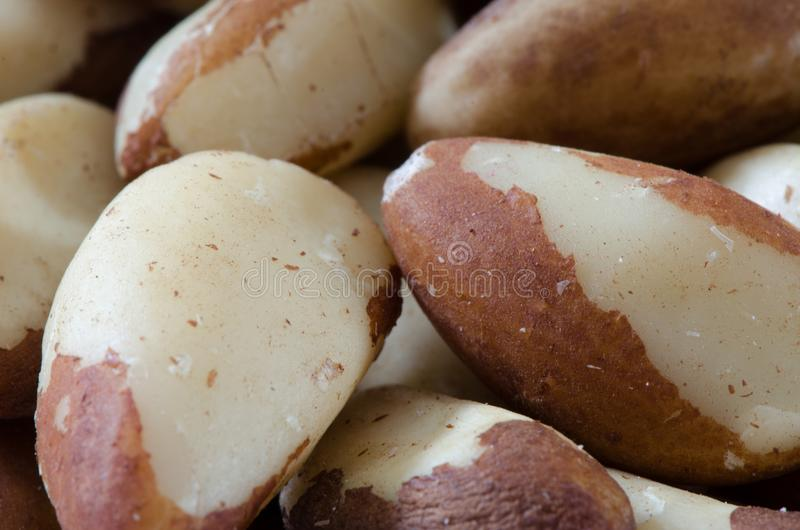 Brazil Nuts Close Up royalty free stock images