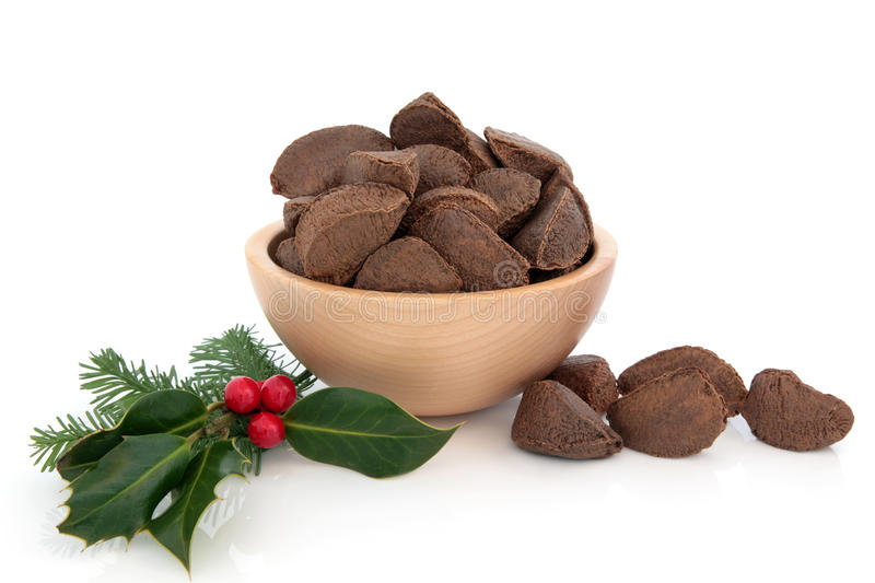 Brazil Nuts And Holly Stock Image