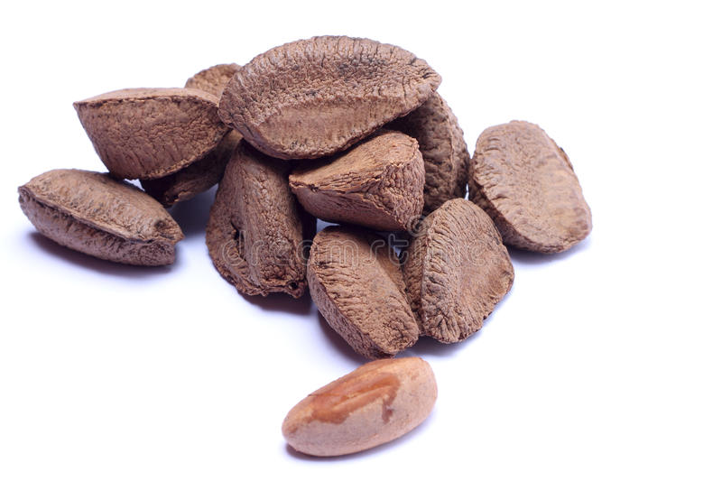 Brazil nuts isolated on white background stock photo