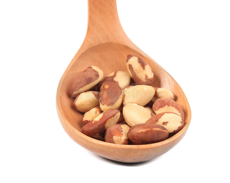 Brazil Nuts in wooden spoon. royalty free stock photos