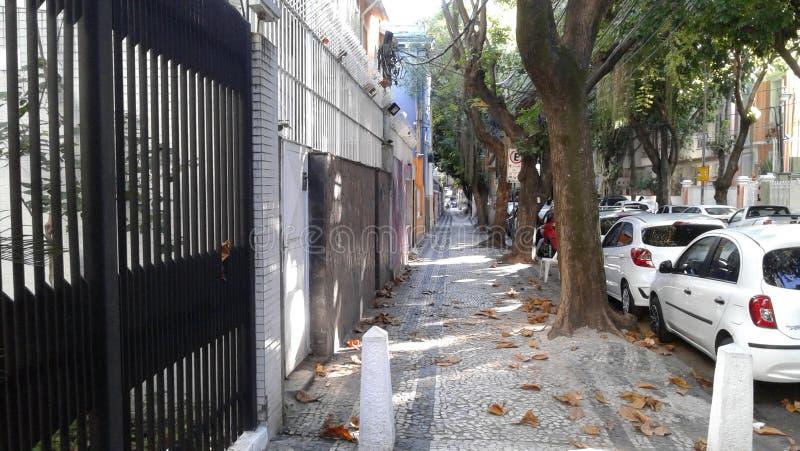 Brazil - Rio de Janeiro - Empty Street - Cars - Trees - Leaves - Cityscape stock photos
