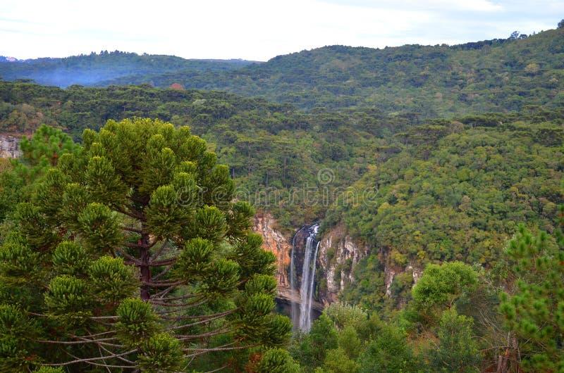 Brazil, Rio Grande do Sul, Gramado Canela, Parque do Caracol Cascata Extraordinary Nature Waterfall, Landscape View. Brazil, Rio Grande do Sul, Gramado Canela stock photo