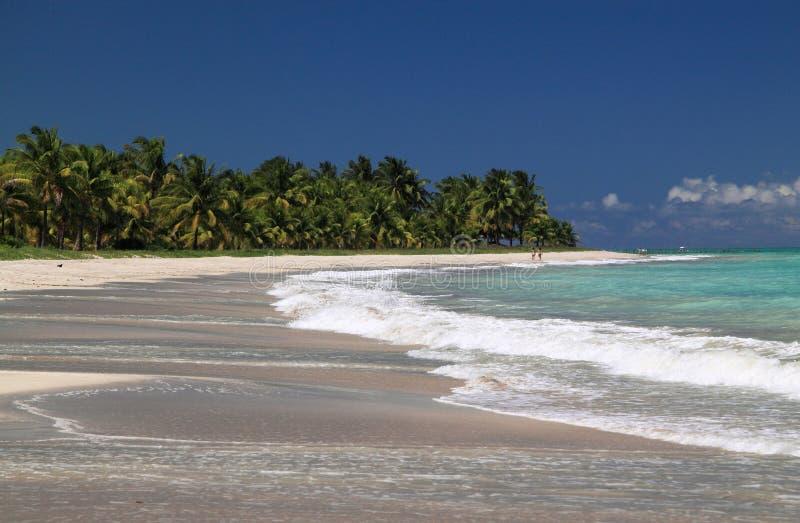 Brazilië, Alagoas, het strand van Maceio stock foto