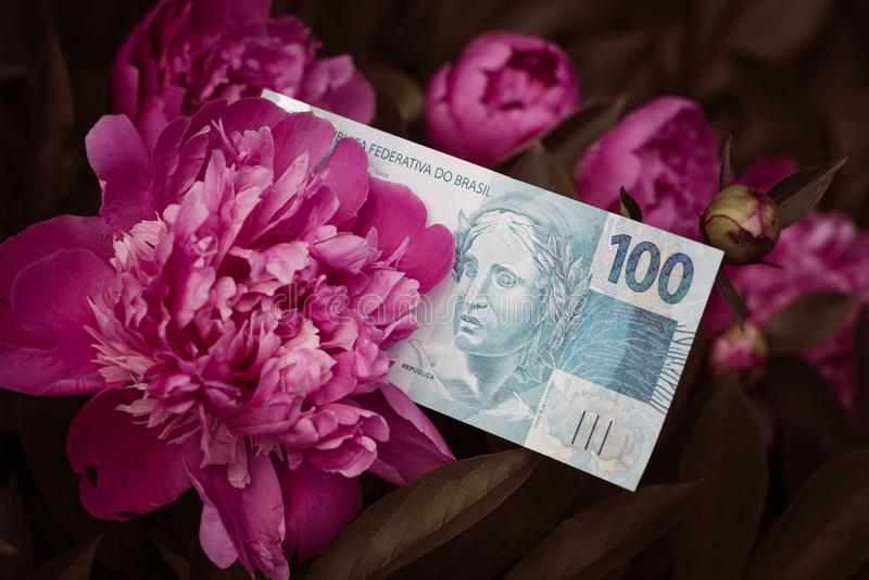 Braziliaans geld, honderd reais, onder bloeiende bloemen royalty-vrije stock fotografie