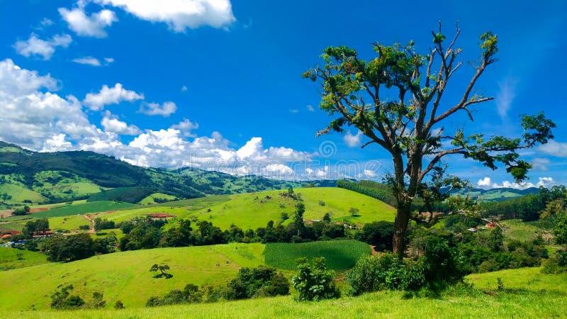 Braziliaanse berg royalty-vrije stock afbeelding