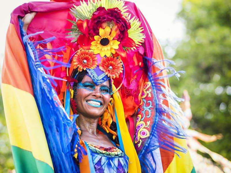 Braziliaanse Vrouw in Rio Carnaval, Rio de Janeiro, Brazilië stock afbeeldingen