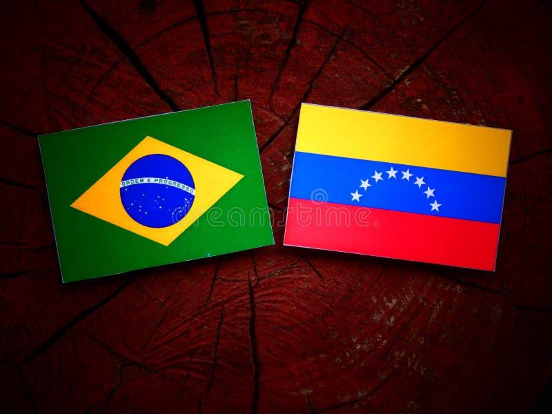 brazilian ilustração do vetor