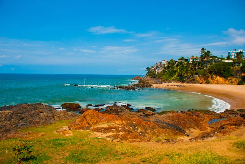 Brazilian beach with yellow sand and blue sea in Sunny weather. Brazil. Salvador. South America stock photography