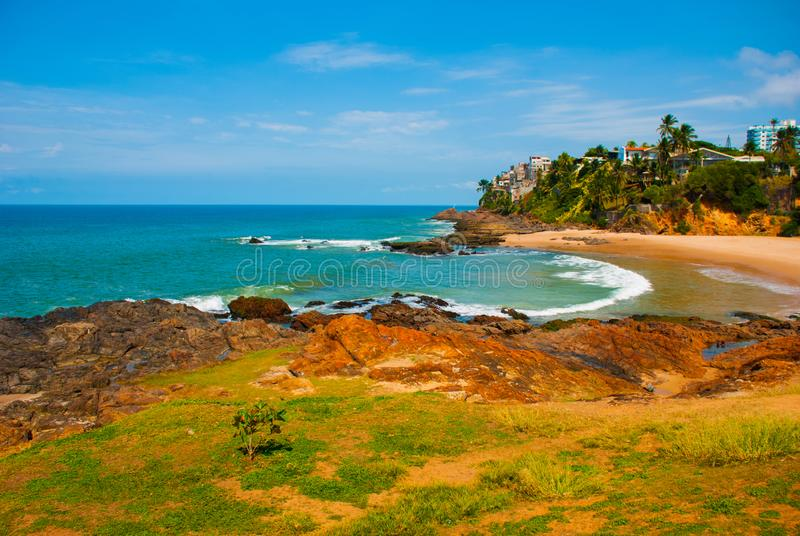 Brazilian beach with yellow sand and blue sea in Sunny weather. Brazil. Salvador. South America stock image