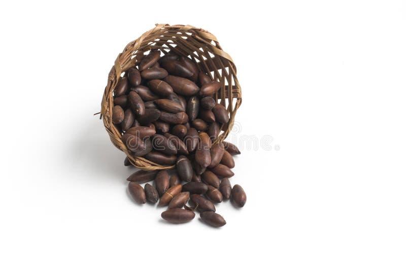 Brazilian Castanha de Baru Nut into a basket. Brazilian Baru Nut into a basket isolated on white background royalty free stock photo