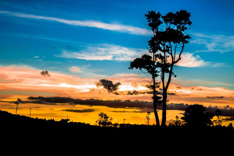 Brazilian clouded sunset silhouette field royalty free stock photography
