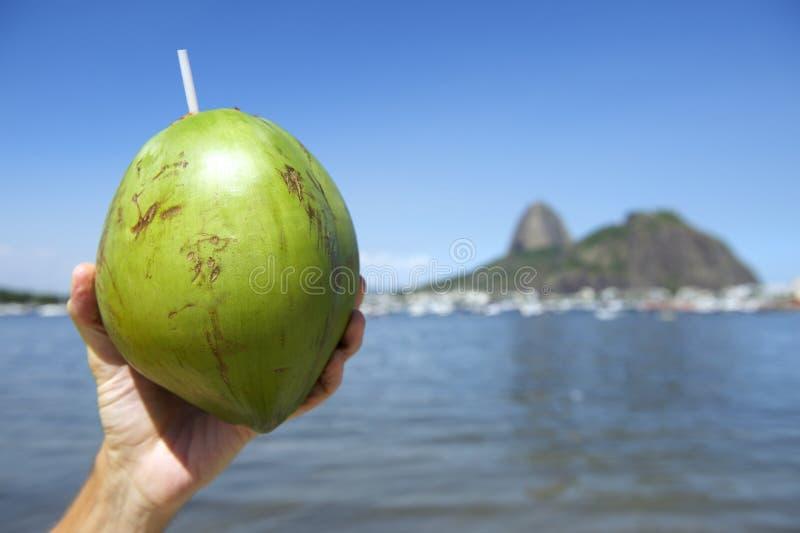 Brazilian Coco Gelado Coconut Rio De Janeiro Brazil Stock