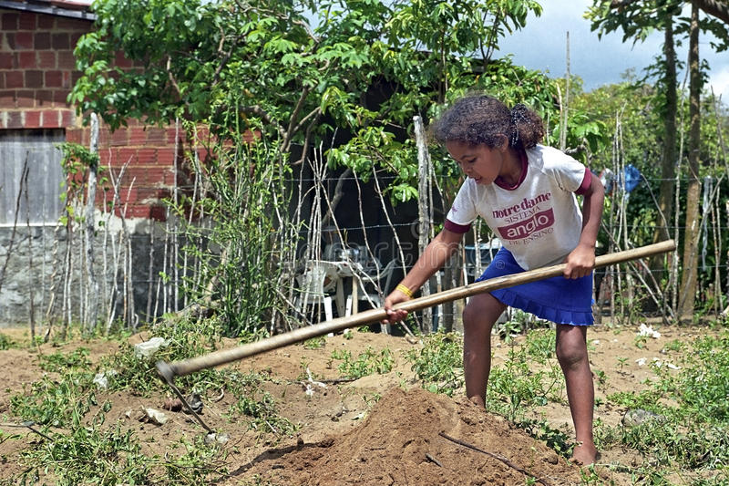 Brazilian girl working in subsistence agriculture stock photo