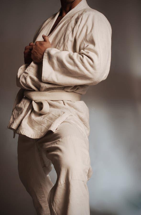 Download Brazilian Jiu jitsu Gi stock photo. Image of male, brazilian - 10532546