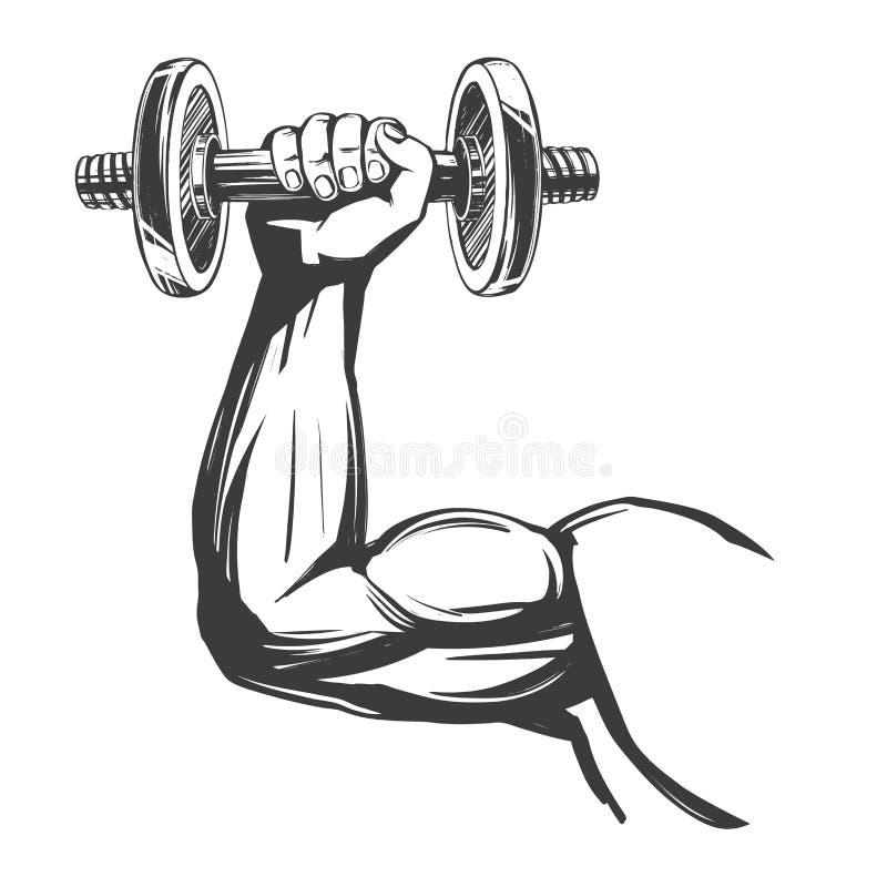 Brazo, b?ceps, mano fuerte que lleva a cabo una pesa de gimnasia, bosquejo dibujado mano del ejemplo del vector de la historieta  stock de ilustración