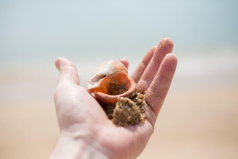 Brazo en el mar imagen de archivo libre de regalías