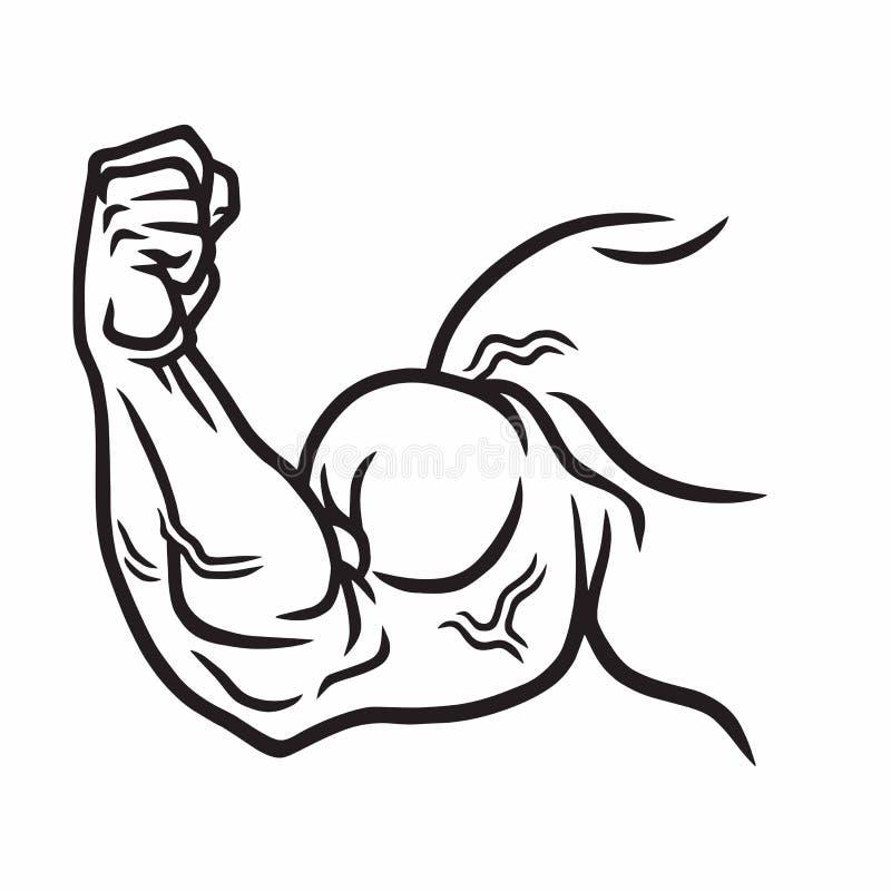 Brazo fuerte muscular, mano potente, bíceps Gimnasio, levantamiento de pesas, ejemplo del garabato del vector del deporte stock de ilustración