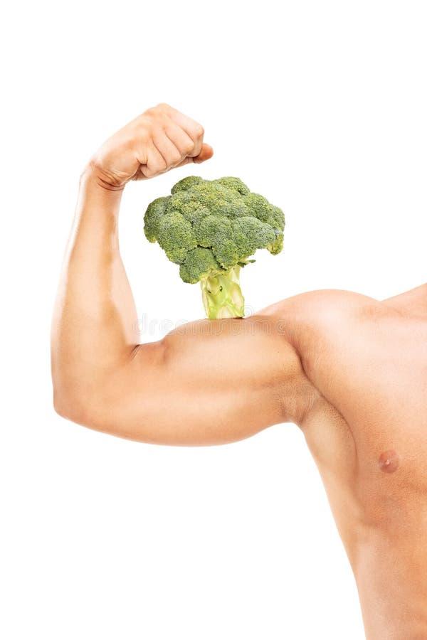 Brazo muscular con un bróculi en el bíceps fotos de archivo libres de regalías