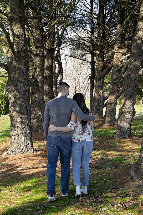 Brazo que camina de los pares en armi entre los árboles de pino altos que llevan a cabo las manos imagen de archivo libre de regalías