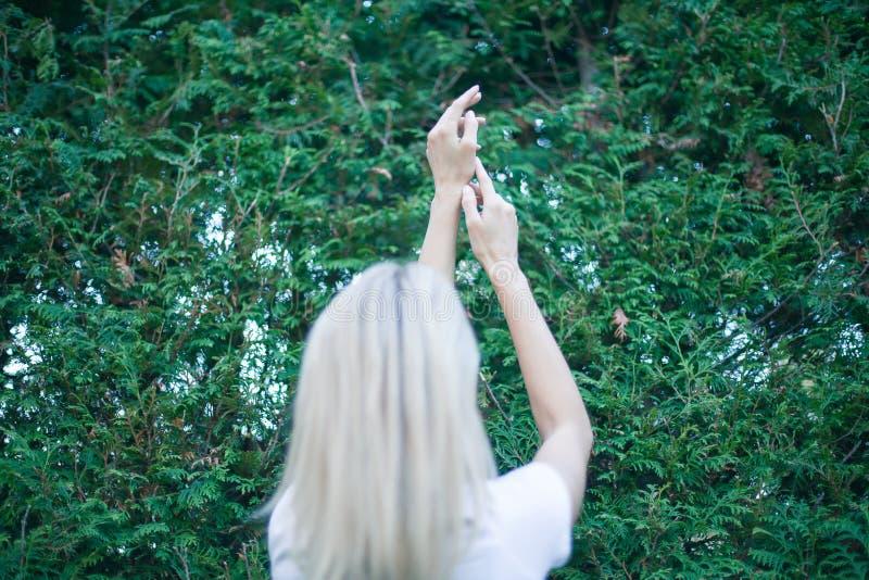 Brazos de la mujer joven aumentados hasta el cielo, celebrando la libertad Emociones humanas positivas que sienten el éxito de la imagenes de archivo