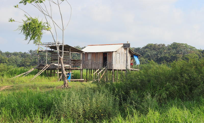 Brazylia, Santarém: Żyć w tropikalnym lesie deszczowym - Domowym na Stilts obrazy royalty free