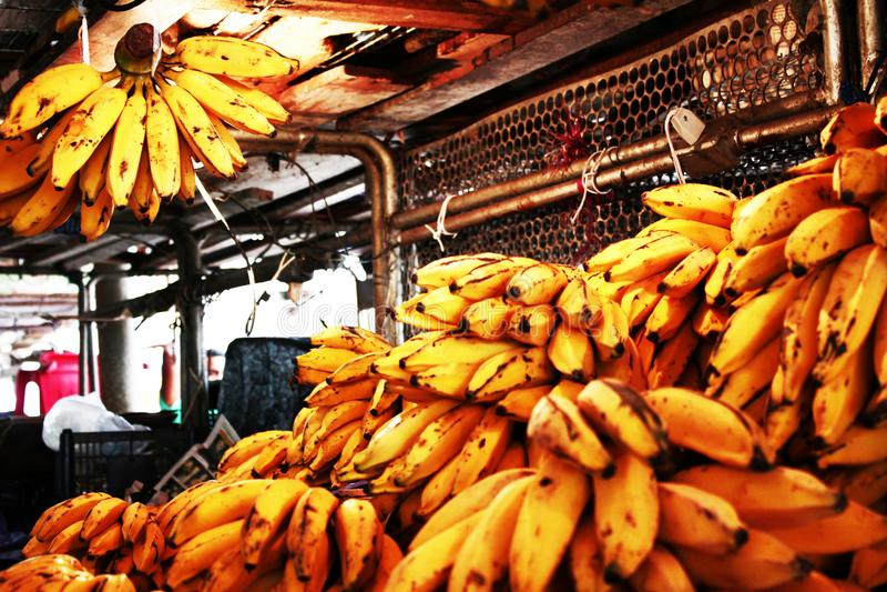 Brazylijscy banany - ameryka łacińska zdjęcie stock