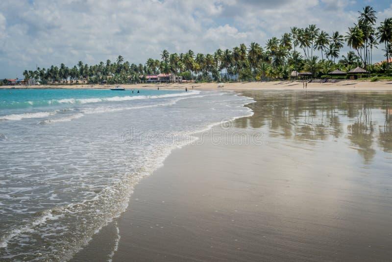 Brazylijska plaża Carneiros, Pernambuco zdjęcia royalty free