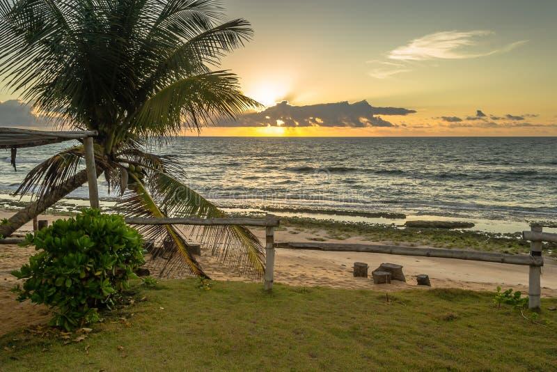 Brazylijskie plaże robią Coruripe, Alagoas fotografia royalty free