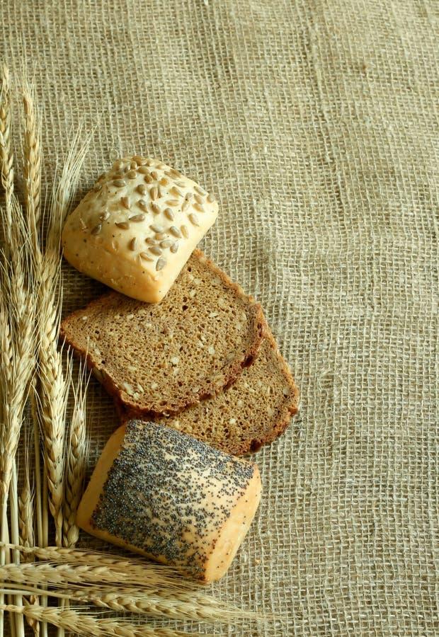 Download Bread stock photo. Image of pastry, baton, health, corn - 10290900