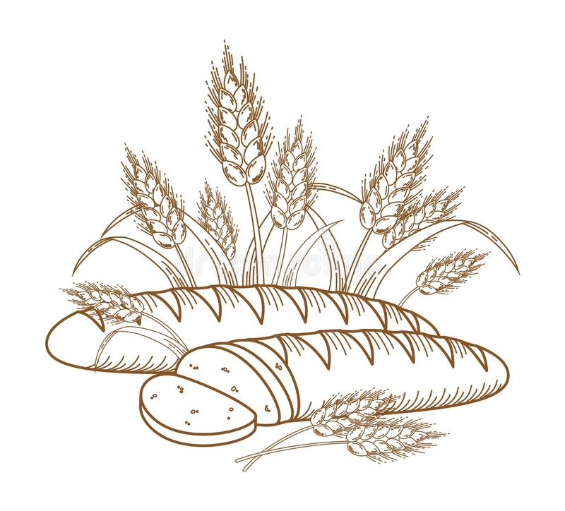Bread. Illustration of ripe ears and bread for your designs stock illustration