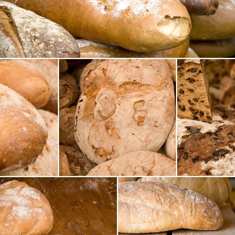 Download Bread stock photo. Image of raisin, edible, corn, cake - 12878730