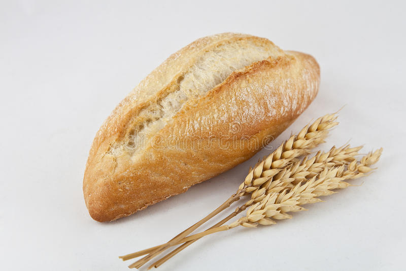 Download Bread stock photo. Image of bread, wheat, sandwich, flour - 21265172