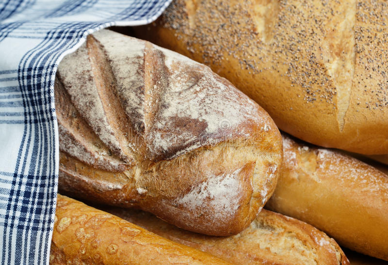 Download Bread stock image. Image of healthy, eating, loaf, lifestyle - 22879451