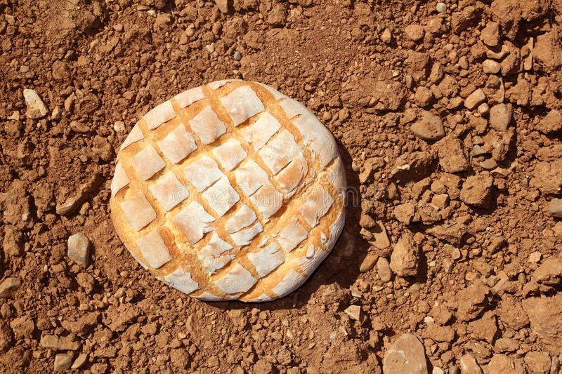 Download Bread Bun Round On Red Clay Soil Background Stock Image - Image: 17306471