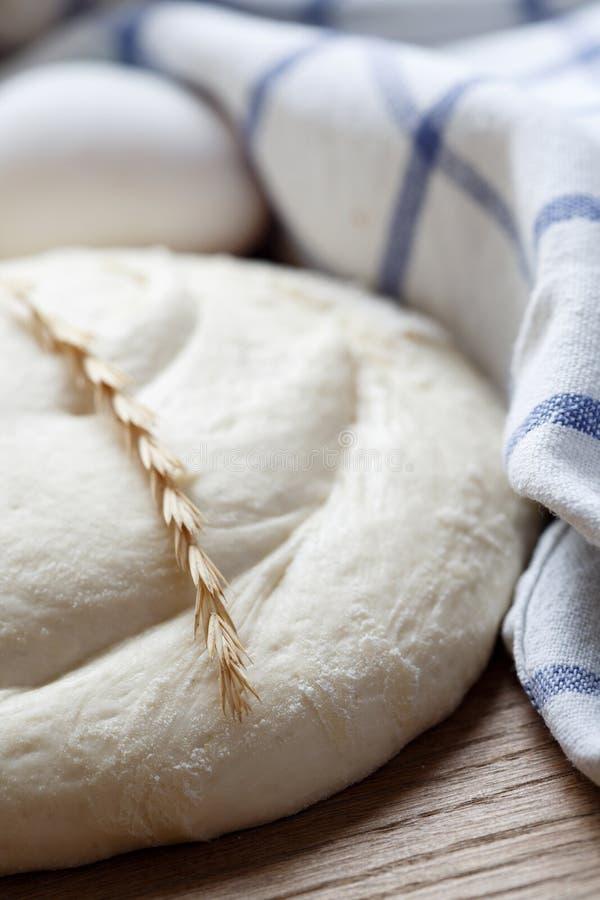 Bread dough royalty free stock image
