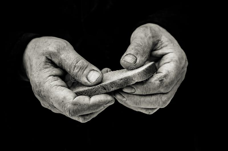 Bread in hand. Hands of an elderly man, on the hands of calluses. Dirty hands of a man clamped a piece of bread stock image