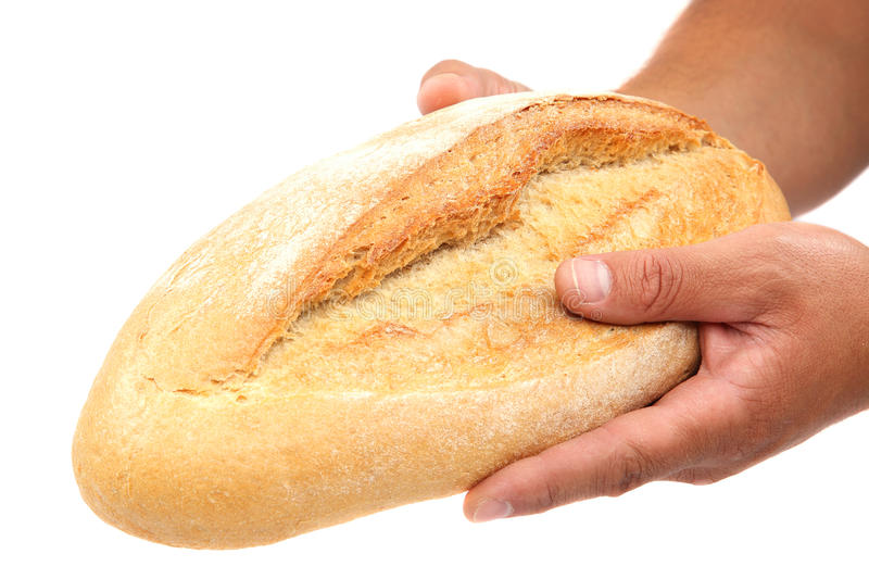 Bread in hands on white background. stock photography